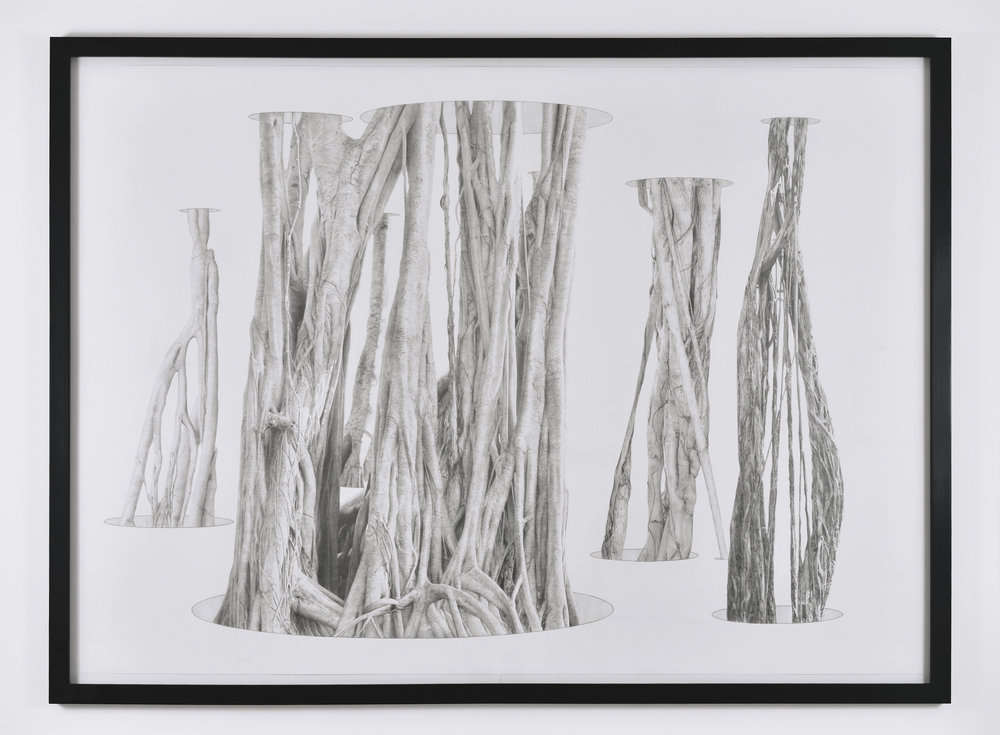 Jim Shaw, Banyan Tree in Holes, 2011 pencil on paper 140 x 188 cm - 55 1/8 x 74 inches