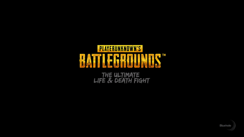 Picture of the  Playerunknown's Battlegrounds  loading screen