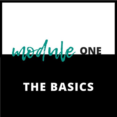 Module+One-+The+Basics.png