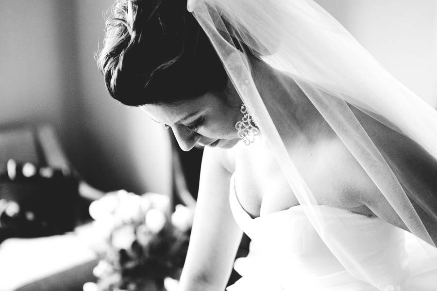 Chicago Wedding Photographer_Adler Planetarium_JPP Studios_AP_42.JPG