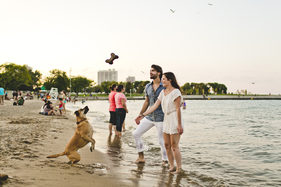 Chicago Engagement Photography Session_Zoo_Lakefront_TA_52.JPG