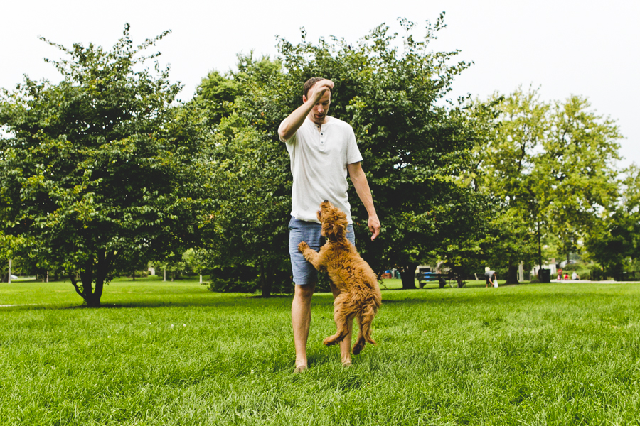 Chicago Family Dog Photography Session_Humboldt Park_B_08.JPG