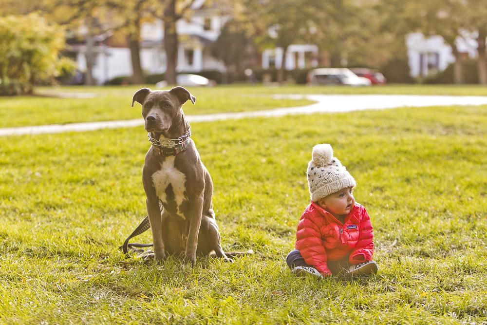 Evanston Family Photographer_at home_session_tarlock_20.JPG