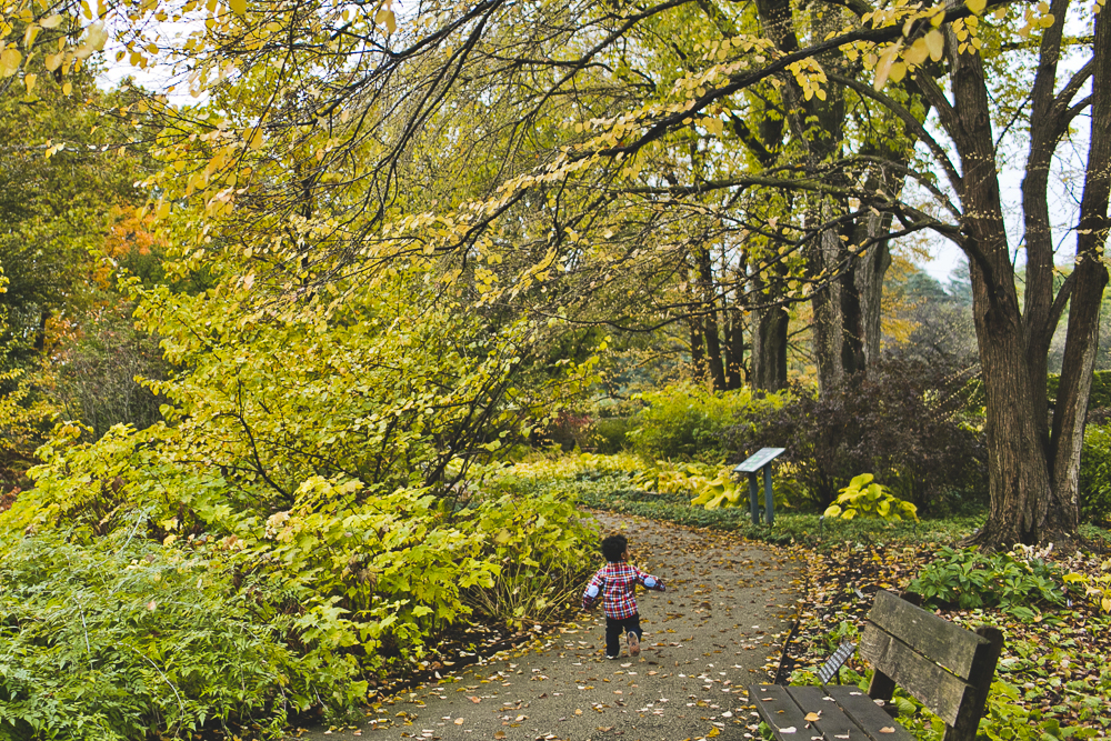 Chicago Suburb Family Photographer_Lisle_Morton Arboretum_JPP Studios_Paul_06.JPG