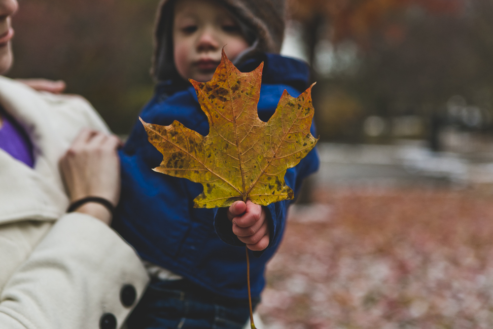 Chicago Family Photographer_winter_autumn_session_lincoln square_winnemac park_JPP Studios_t_24.JPG