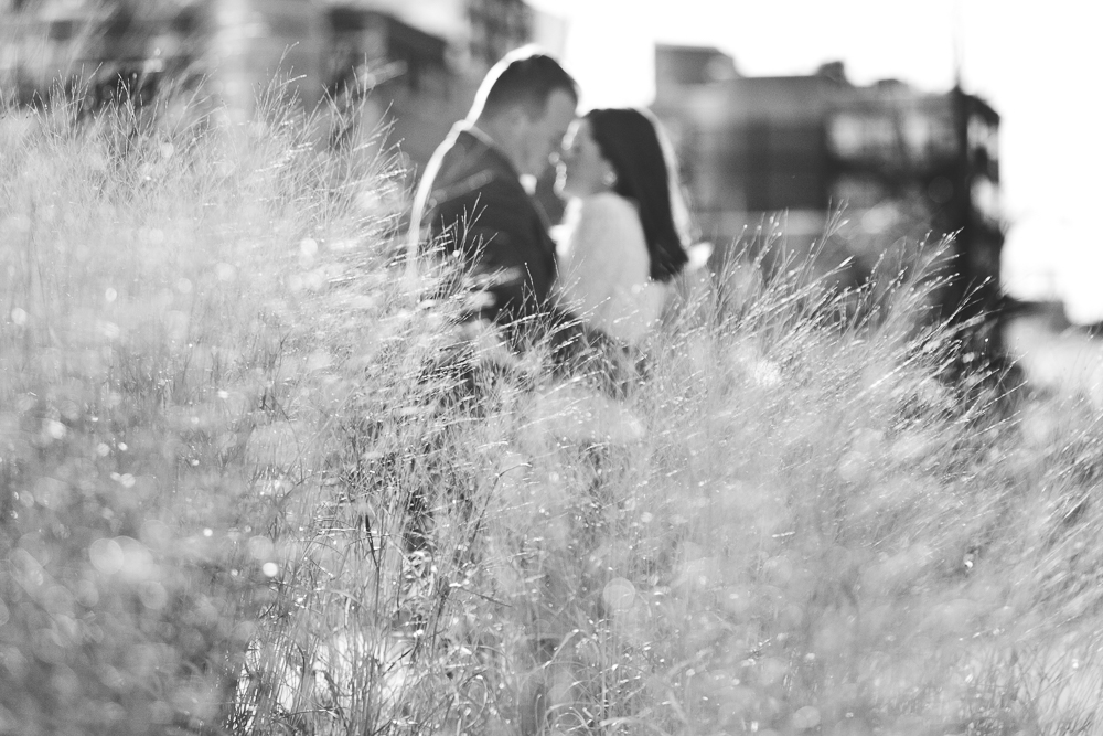 Chicago Engagement Photography Session_Wedding Photographers_JPP Studios_AM_03.JPG