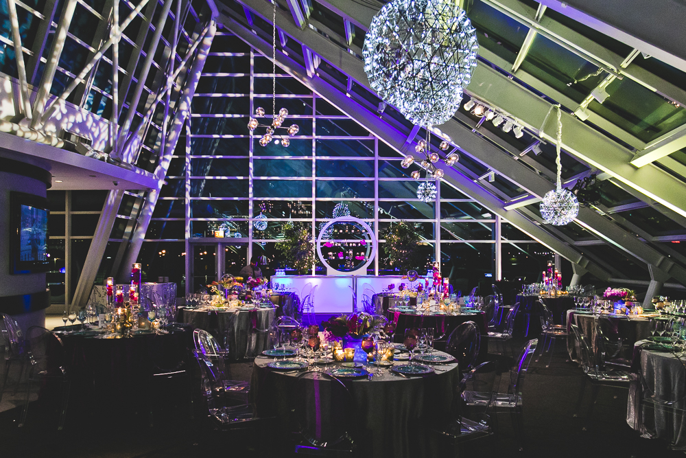 Chicago Wedding Photographers_Adler Planetarium_JPP Studios_RS_055.JPG