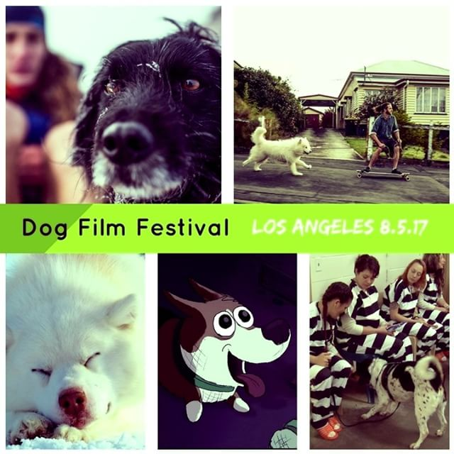 A few stills from some of the films in the Second Annual Dog Film Festival debuting in #LosAngeles this Saturday, August 5th. A portion of proceeds benefits Michelson Found Animals Foundation. Want details? Click the link in our bio and click DESTINATIONS.  #DogFilmFestival #writersguildtheater #mytraildog #dogfilms #filmfest #filmfestival #losangelesevents #dogsoflosangeles #dogsofla #ladogs #losangeles #losangelesart #dogsofinstagram #michelsonfoundanimals #foundanimals #adoptdontshop #dogsofinstagram #rescueismyfavoritebreed #muttskickbutt