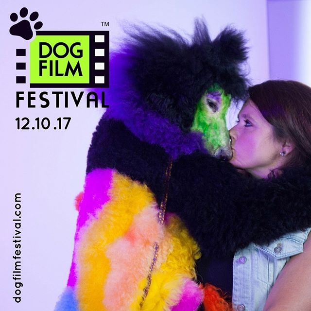 "Take a look inside the world of creative competitive dog grooming in Rebecca Stern's documentary, ""Well Groomed"" as part of the 3rd Annual NY Dog Film Festival on 12/10. Info & tix at www.dogfilmfestival.com"
