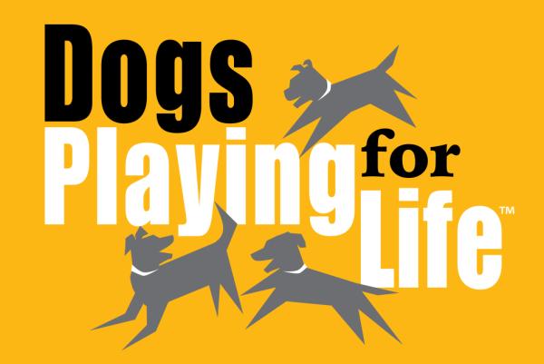 dogsplayingforlifelogo.png