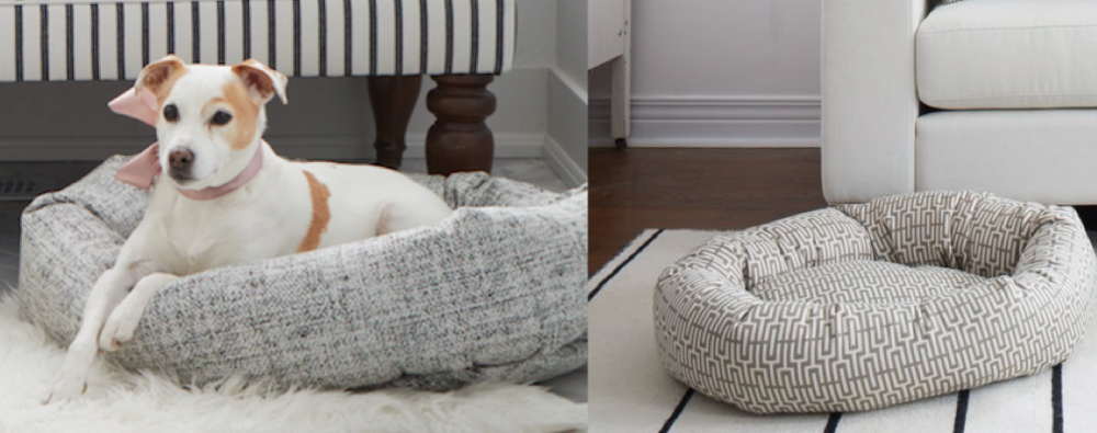 dog beds, jo alcorn