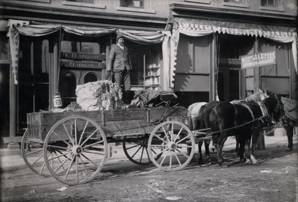 Horse and Wagon at Oatmans.jpg