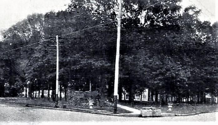 Medina Park 2.jpg