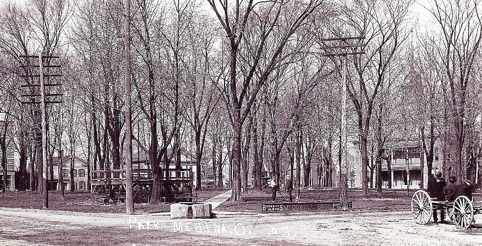 Park bare trees 1907 - Copy.jpg