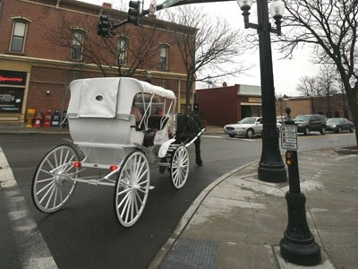 Horse and Carriage on N. Court.jpg