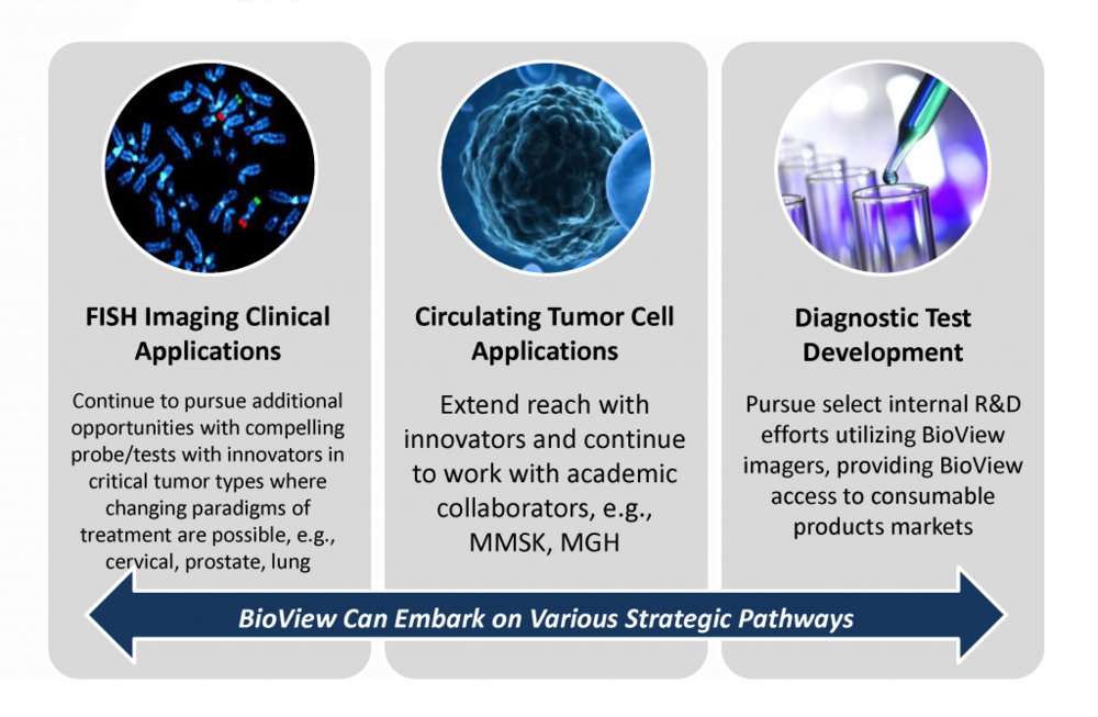 BioView is pursuing various strategic pathways, including FISH imaging clinical applications, circulating tumor cell (CTC) applications, and the development of diagnostic tests to provide access to the consumable products markets