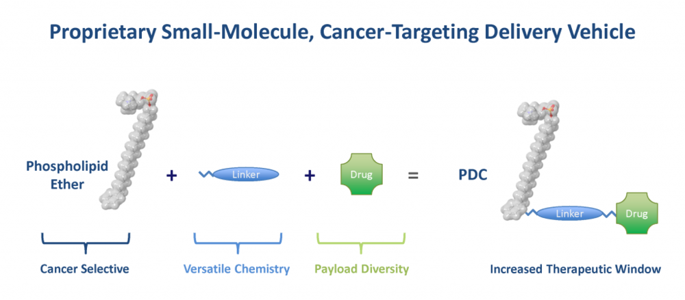 PDCs are proprietary small molecule, cancer-targeting delivery vehicles made up of a cancer selective phospholipid ether, a linker molecule and a drug payload