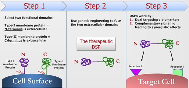 A New Therapeutic Modality: Dual Signaling Proteins (DSPs)