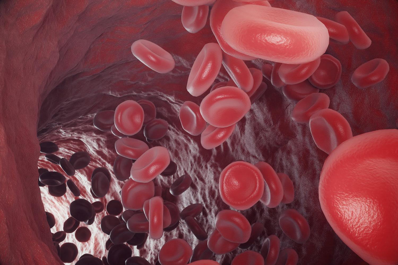 FDA — Features   BioTuesdays by Kilmer Lucas