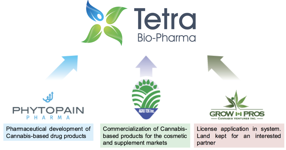 Founded in 2015, Tetra operates through three subsidiaries, including Phyto Pain Pharma, a developer of cannabis-based drug products; Agro Tek, its commercialization arm for natural health products; and Grow Pros, a landowner proceeding with plans to become licensed to grow marijuana