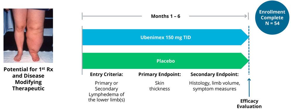 UBENIMEX FOR LYMPHEDEMA: PHASE 2 STUDY