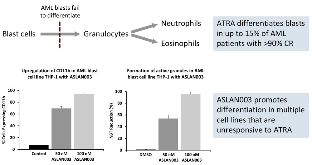 ASLAN003 is an orally active, potent inhibitor of DHODH DHODH controls the rate-limiting step in the synthesis of pyrimidines and contributes to the production of AT