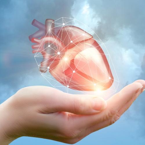 heart-695204136.jpg