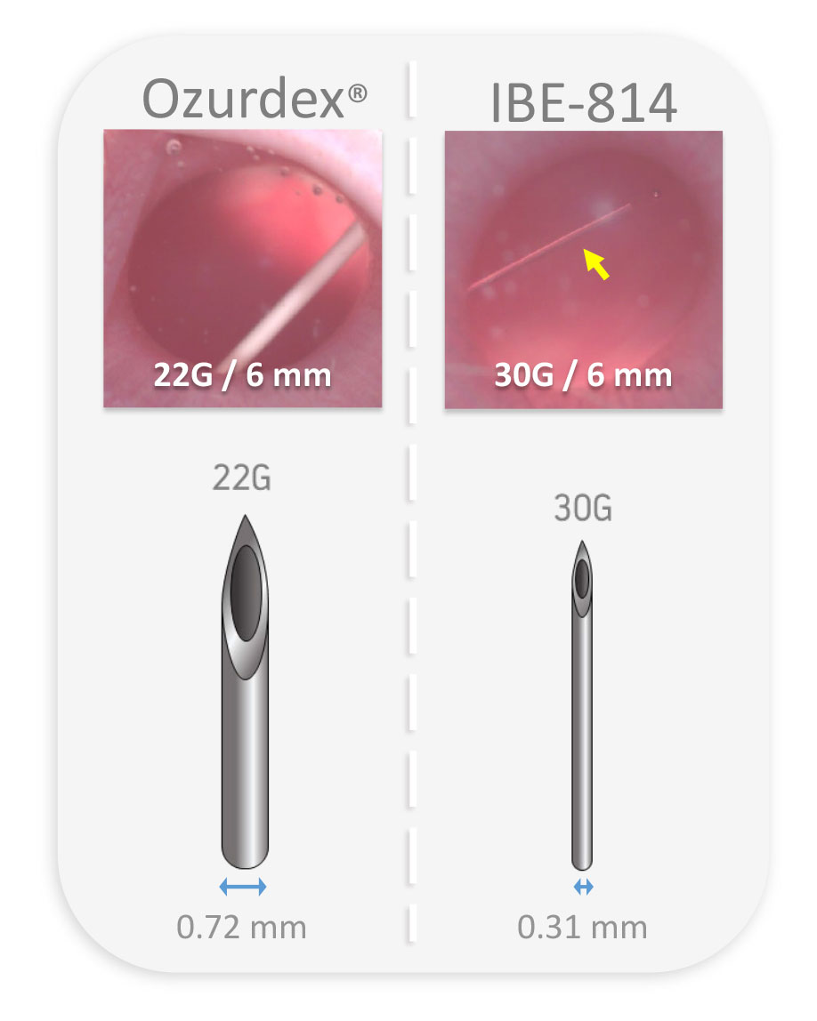 IBI-Epidel-deck-9.jpg