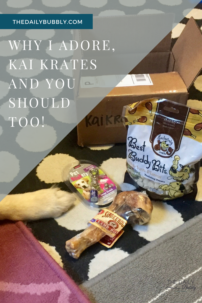 KaiKrates_WHY I ADORE, KAI KRATES AND YOU SHOULD TOO!_The _Daily-Bubbly