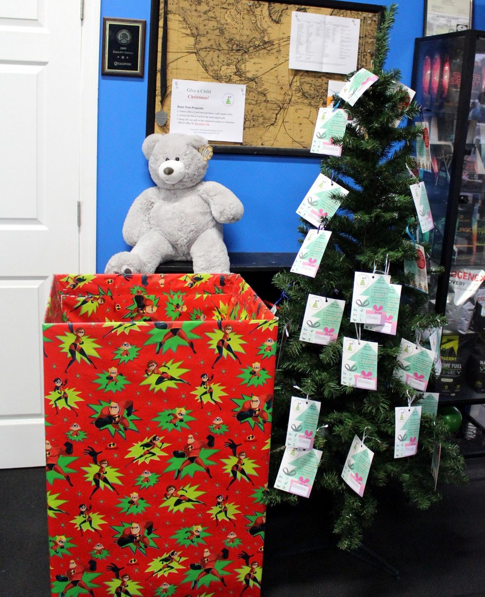 There's still time to donate toys to the Christian Care Dove Tree program (it says til Dec 5th, but Fedex will actually be picking it up on Dec 7th or 8th). First box is full already so they had to bring us another one - thank you all who donated!