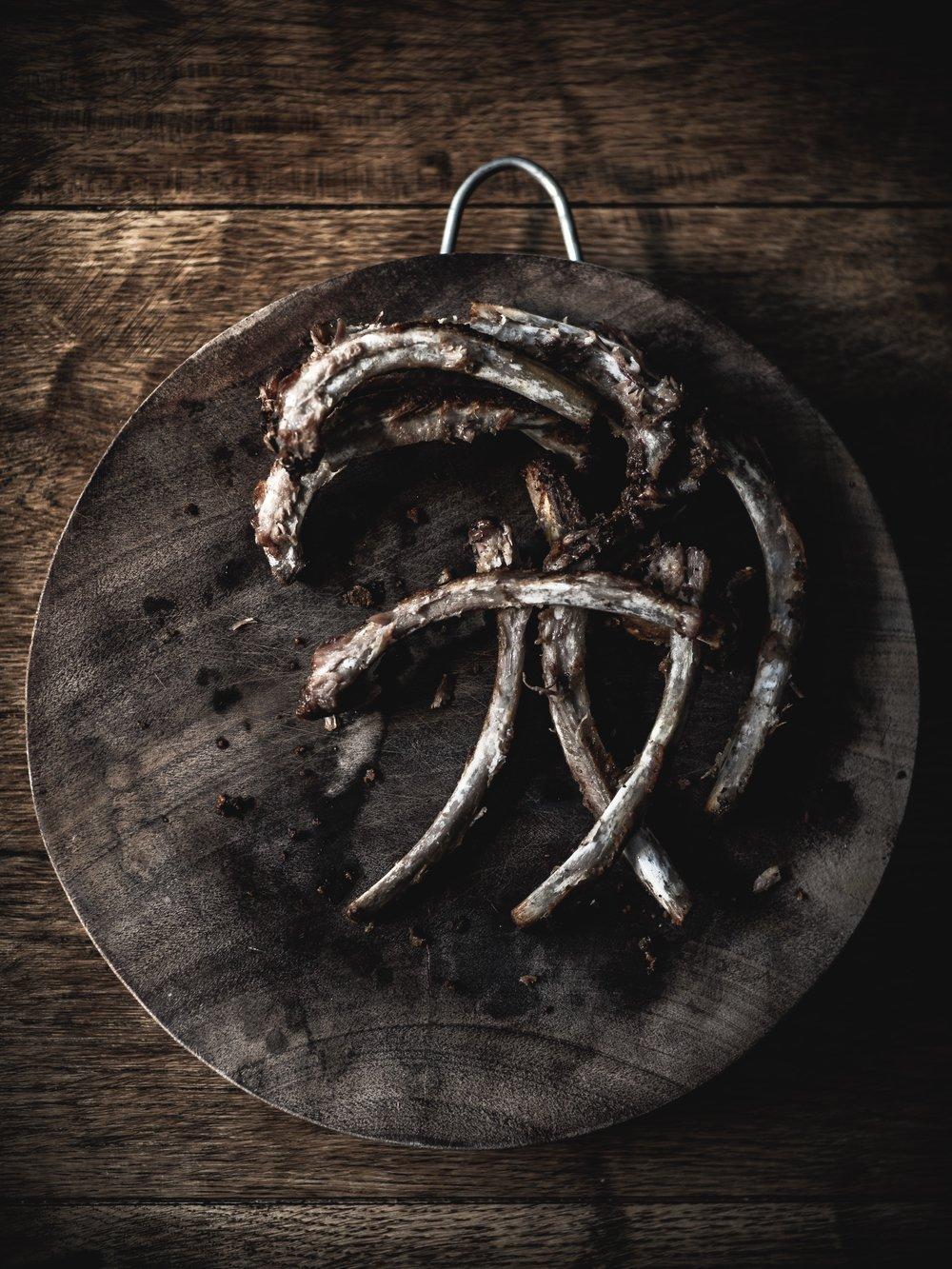 Carnivore diet baby back pork ribs bones aftermath