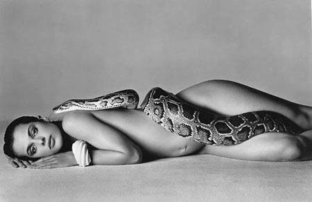 Richard Avedon Inspiration Natassja Kinski 1981 Snake
