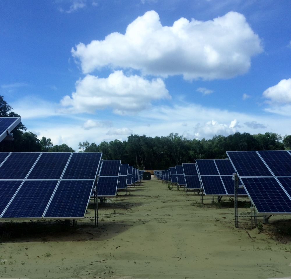 Bainbridge Solar Farm