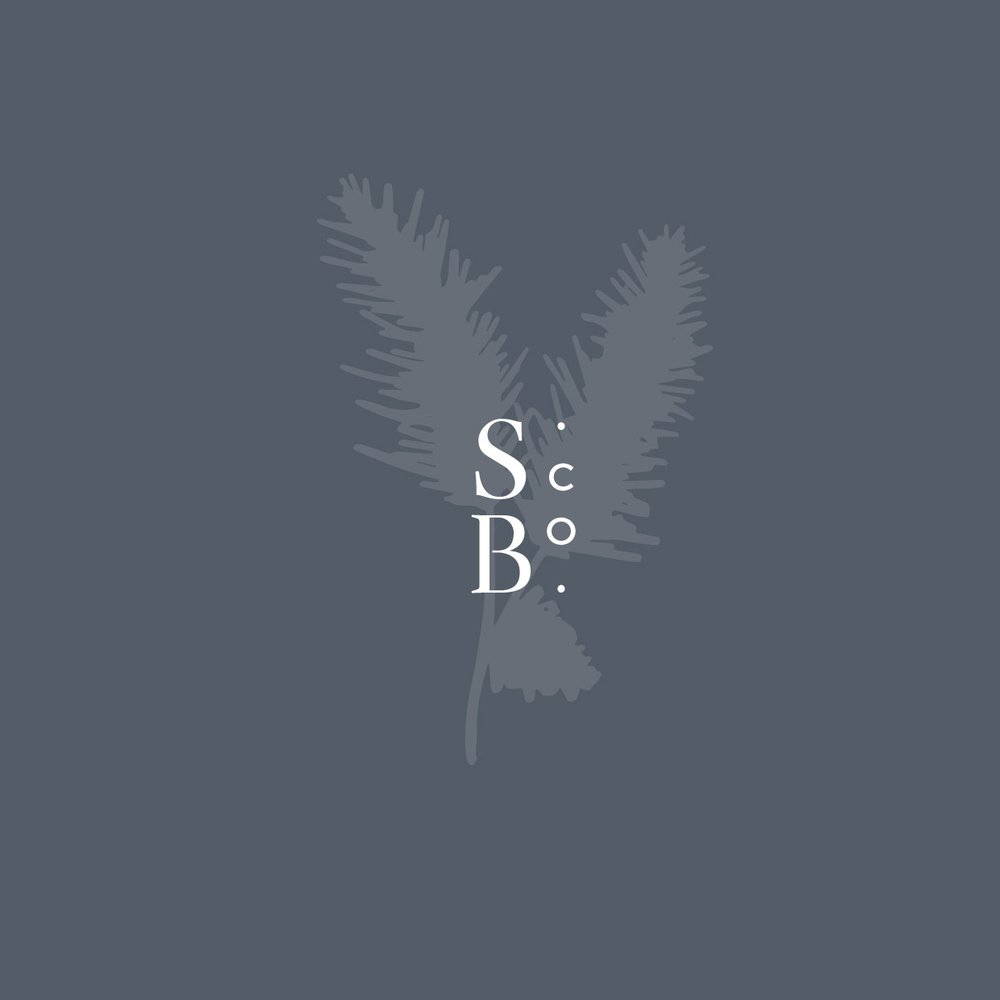 spruce_botanical8.jpg