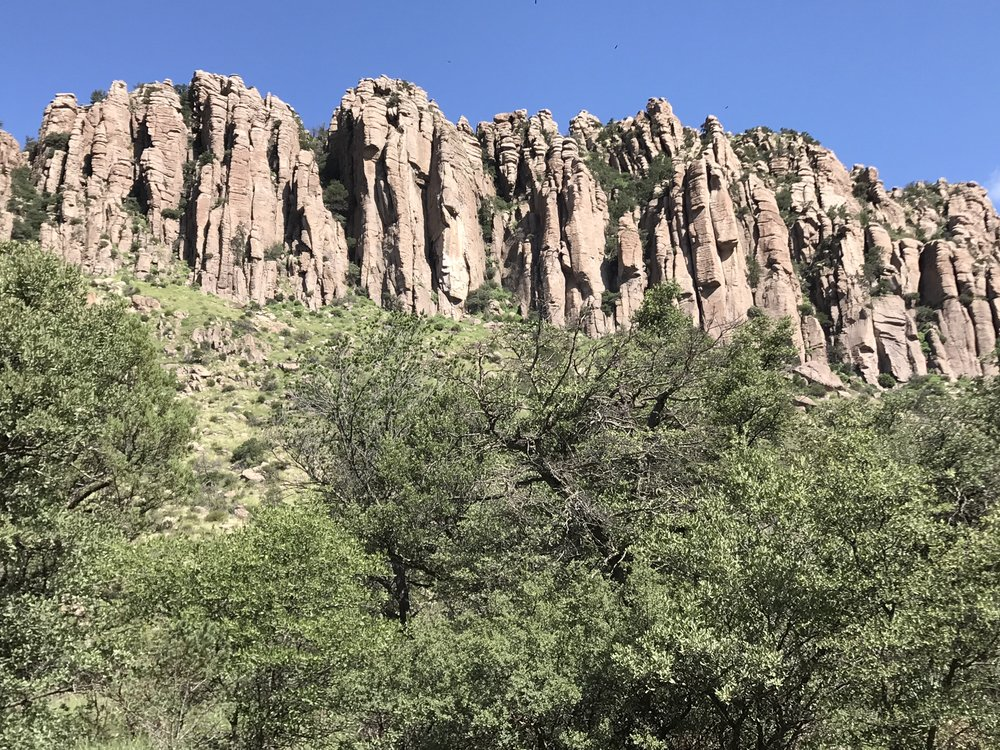 View of the Canyon Wall from the campsite! This feature was called the Organ Pipe Columns.