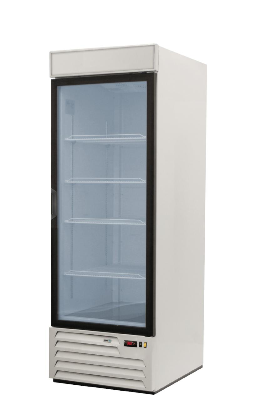 AFMD 23 Asber Single Glass Door Freezer