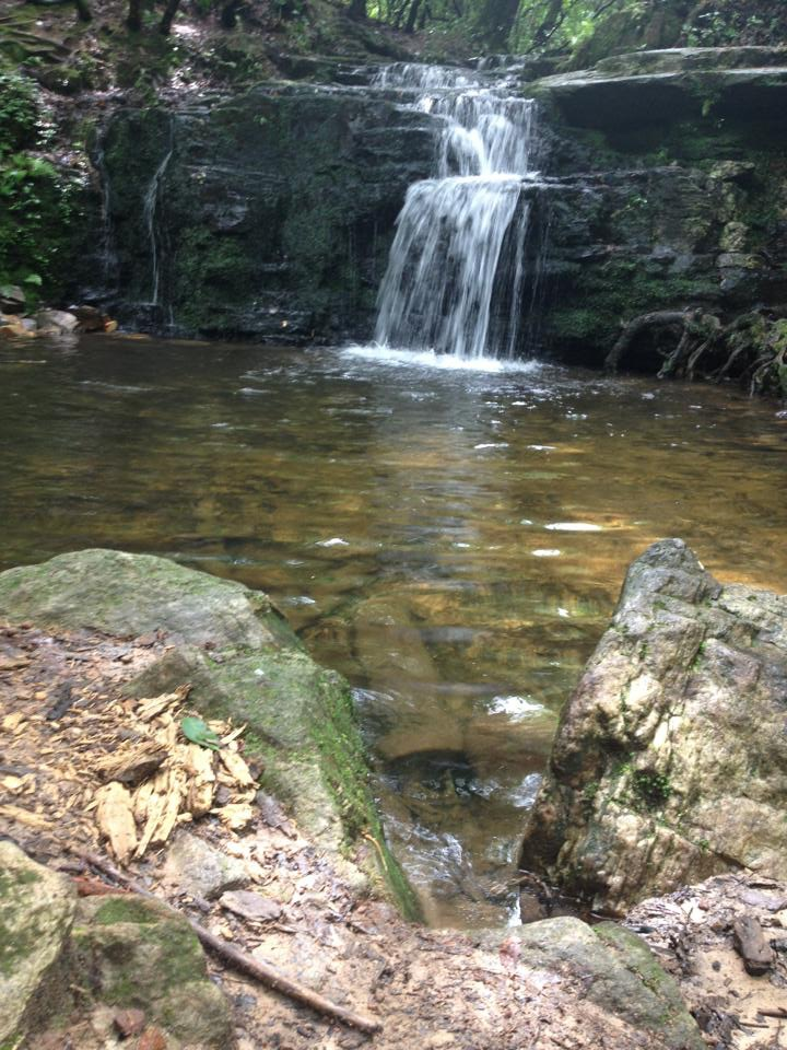 April 21st @ 11:00 - Iron Braid Cascade Falls Hike