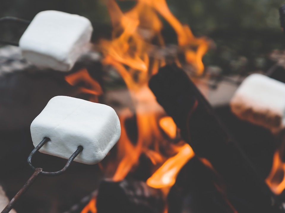 roasted marshmallows fire