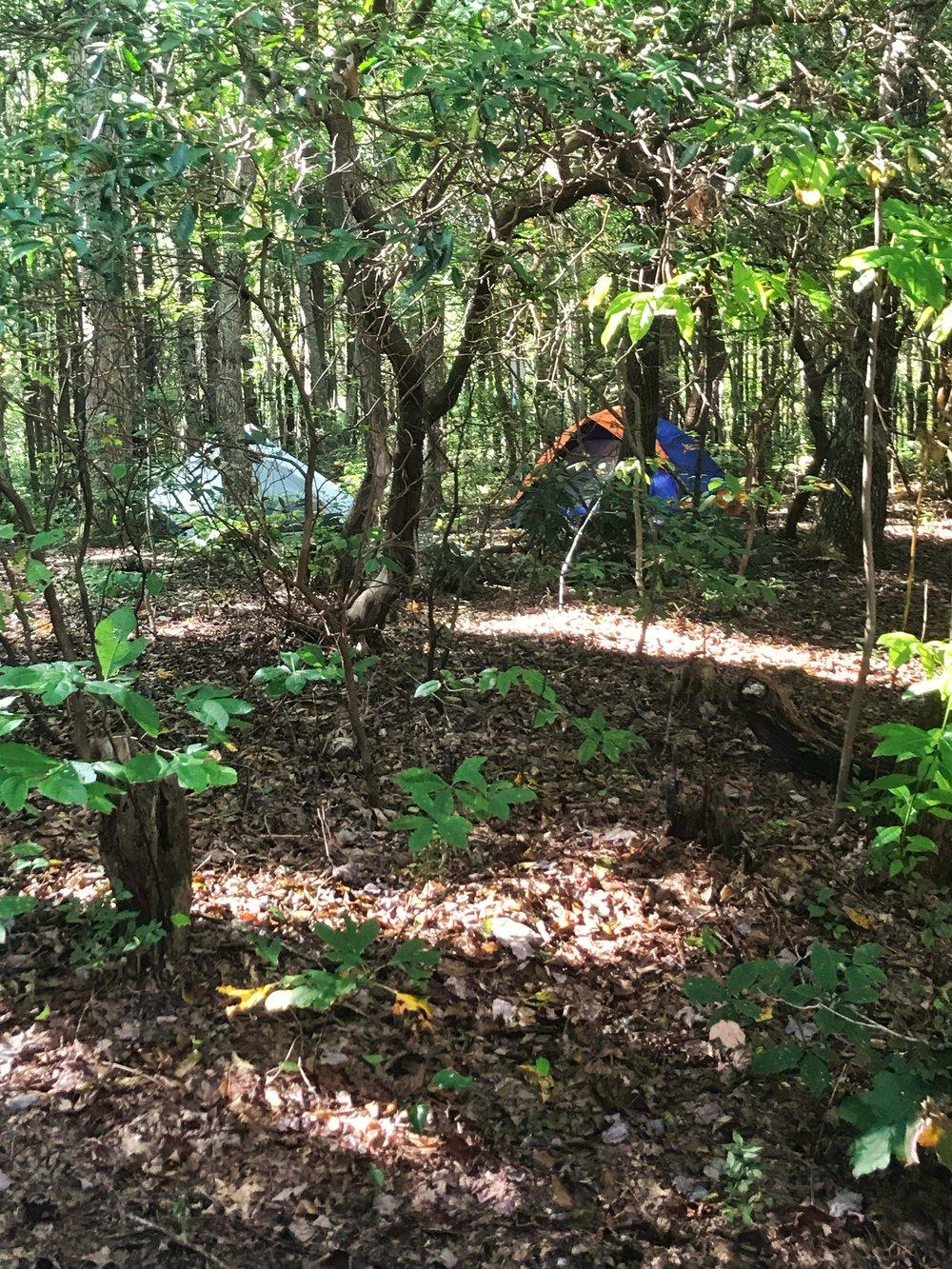 Hawk Mountain Shelter Appalachian Trail Georgia