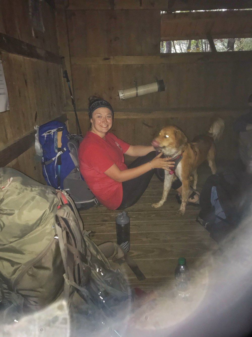 Gooch Mountain Shelter Appalachian Trail Georgia