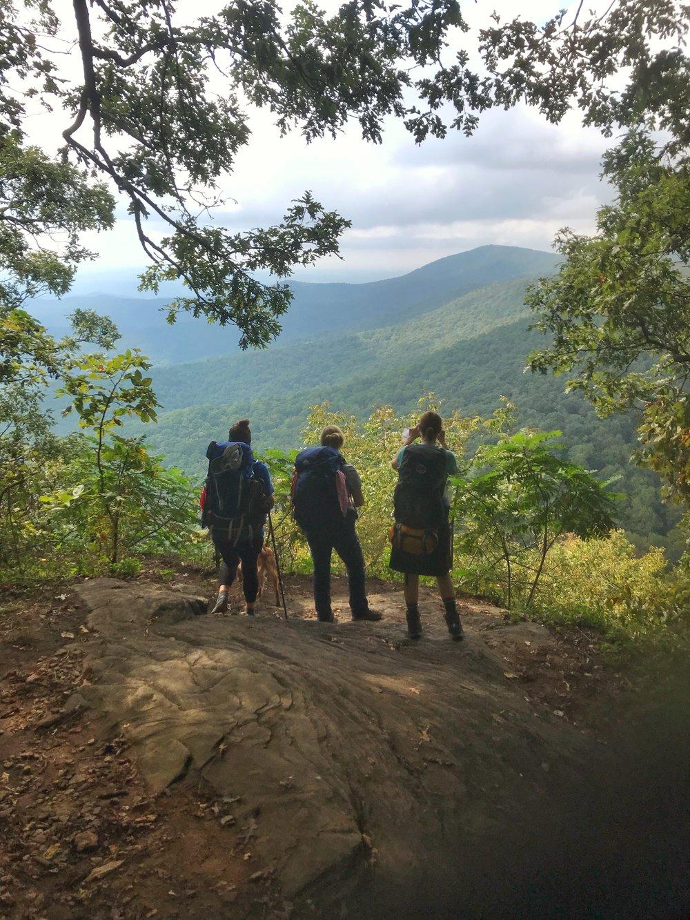 Copy of Appalachian Trail Georgia