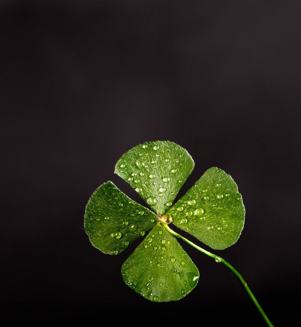 - Pot O' Gold Irish Pub NightMarch 16 - 17Join us for a wee bit o fun! We will have Irish food, music, and drinks. The evening will be spent relaxing, laughing, eating, and celebrating at our Pot O' Gold Camp Pub.