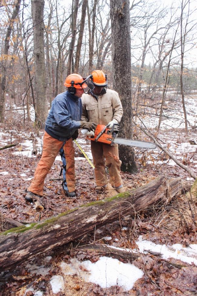preparing the winter woodpile at the farm | La Petite Farmhouse
