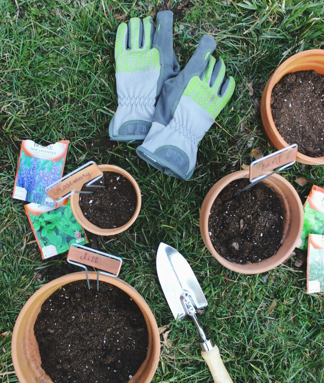 gardening gear for planting a spring herb garden