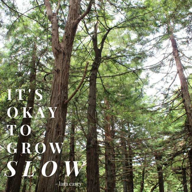 """it's okay to grow slow"" - lara casey"