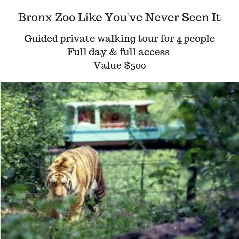 Bronx Zoo Like You've Never Seen It.jpg