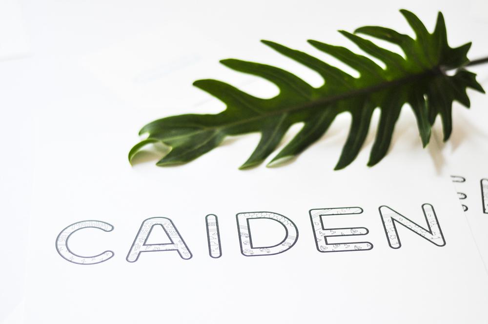 Type_Caden.jpg