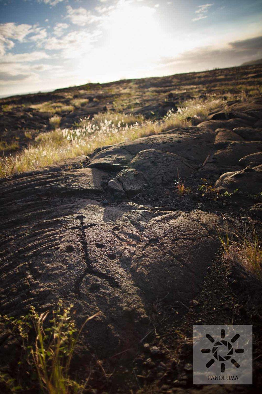 hawaii-20101212-03589.jpg