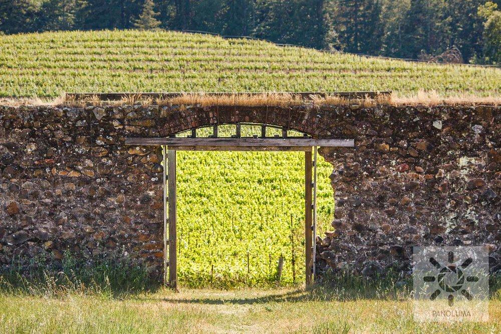 Vineyard Portal