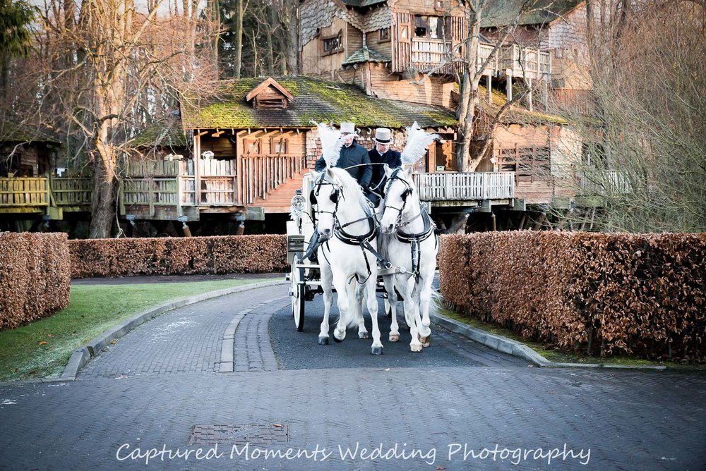 Image out horse draw carriage at Alnwick Tree House